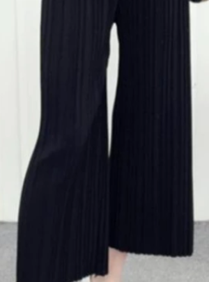 Wide leg pleated cropped pants
